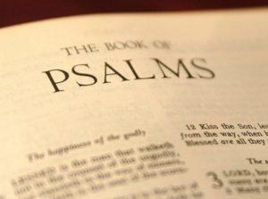 ¿Quién escribió el libro de salmos?