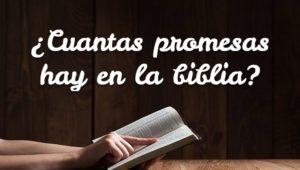 ¿Cuantas promesas hay en la biblia?